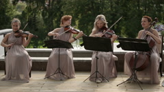 Musical quartet. Three violinists and cellist playing music. Long shot. - stock footage
