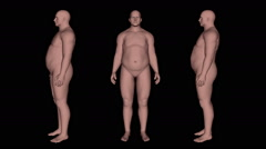 Slimming animation with male 3D model. Stock Footage