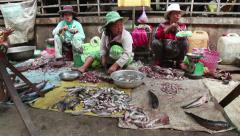 Kratie, Cambodia, Southeast Asia, traditional market, people selling fish 1of2 Stock Footage