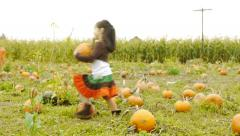 Little Girl Carries A Pumpkin Through A Pumpkin Patch Stock Footage