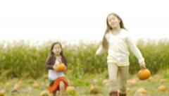 Sisters Run Through Pumpkin Patch And Share Their Pumpkins With Camera - stock footage
