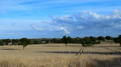 View of English Countryside and Barley Fields Stock Footage