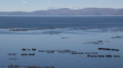 Peru Lake Titicaca tranquil water and fish hatchery boxes  Stock Footage