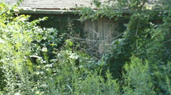 Abandoned house country Kentucky Stock Footage