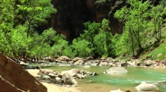 Zion National Park and Virgin River Stock Footage