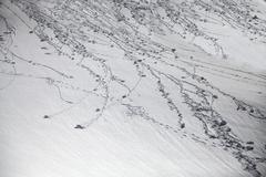 Avalanche. Stock Photos