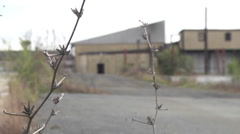 Urban decay industrial landscape telephoto abandoned buildings and weeds Stock Footage