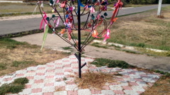 Tree of happiness in the wind Stock Footage