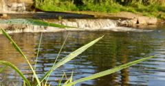 Industrial water body / Waterfall / Weir Stock Footage