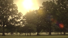 arlington cemetary 1 - stock footage