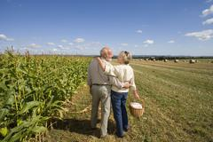 Mature couple arm in arm with basket by corn field, rear view Stock Photos