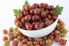 Stock Photo of ripe gooseberry abundance
