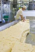 cheese maker turning farmhouse cheddar curds - stock photo