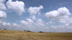 Bales of straw on a field. Stock Footage