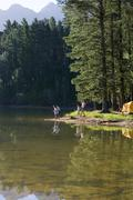 father and son (8-10), in mid-distance, fishing in lake on camping trip, moth - stock photo