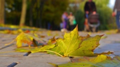 Autumn day in a park, strolling people. Selective focus. Stock Footage