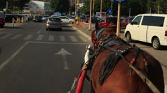 Horse pulling carriage in town Stock Footage