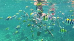 Man diving in coral reef and feding fish. Underwater scene. - stock footage