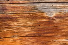 Stock Photo of background close up of cedar trunk wood