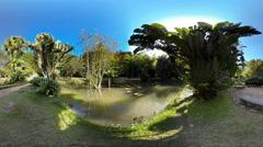 4K UHD People walk in world of tropical botanical garden Stock Footage