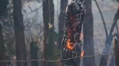 Farm fencing burning Stock Footage