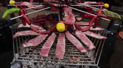 Assorted Meat Grill - stock footage