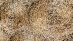Mow and hayloft harvest Stock Footage