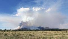 4K McCrea Fire in Northern Arizona - stock footage