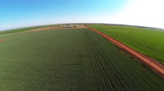 Aerial of Green crops Stock Footage