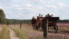 Old fashion Horse-drawn carriage - stock footage