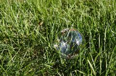 Fragile bubble and green grass - stock photo