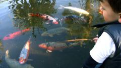 A little boy pretending to fish for Koi Carp. Stock Footage