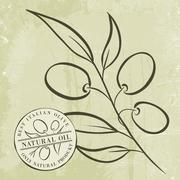 Olive Branches - stock illustration