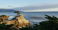 4K Lone Cypress 01 Sunset Ocean 17 Miles Drive Monterey California Stock Footage