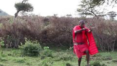 Young hunter from Masai tribe in hunting. Stock Footage