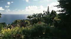 1080p, garden of eden, maui, hawaii Stock Footage