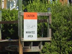 "Sign ""Caution Manatee Area"" 01 Stock Footage"
