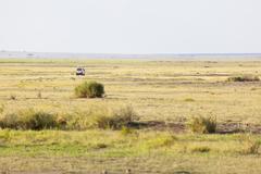 safari car in the savanna of amboseli national park in kenya - stock photo