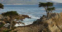 4K Lone Cypress 04 Sunset Ocean 17 Miles Drive Monterey California Stock Footage