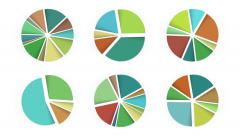 6 pie charts. A luma matte (alpha channel) is included. Stock Footage