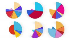 6 pie charts. A luma matte (alpha channel) is included. - stock footage