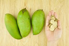 man buying mangifera indica or mango by gold coin - stock photo