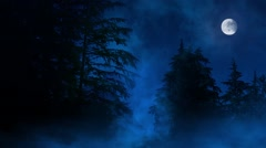 Night Forest Misty Swamp And Moon - stock footage