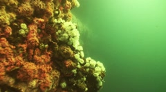Oil Rig Diving clip04 Stock Footage