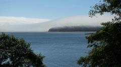 Oregon Tillamook Bay headland in mist with trees 4k Stock Footage