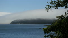 Oregon Tillamook Bay over headland 4k Stock Footage