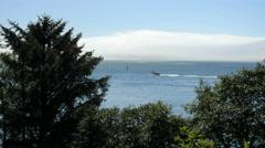 Oregon Tillamook Bay fog over spit 4k Stock Footage