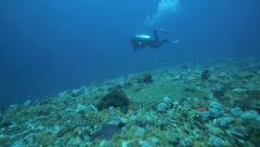 Scuba diving drift dive in fast current Stock Footage