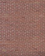 red-brick-wall - stock illustration