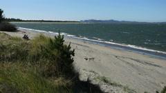 Oregon Columbia River beach windy 4k Stock Footage